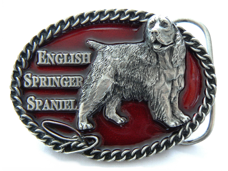 Springer Spaniel Buckle