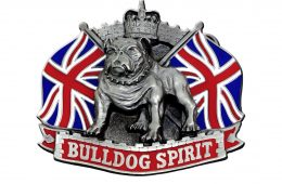 Bulldog Spirit Buckle