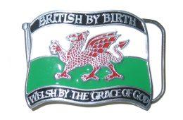 Welsh by Grace of God